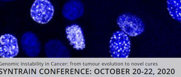 "Συνέδριο ""Genomic Instability in Cancer: from tumour evolution to novel cures"""