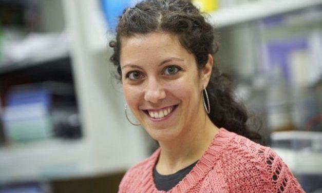 Μαρία Θέμελη: Η Ελληνίδα που αναδείχθηκε γυναίκα της χρονιάς στην Ολλανδία